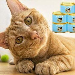 Macska konzerv